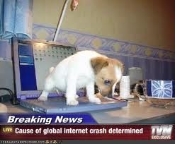 Cause of internet crash